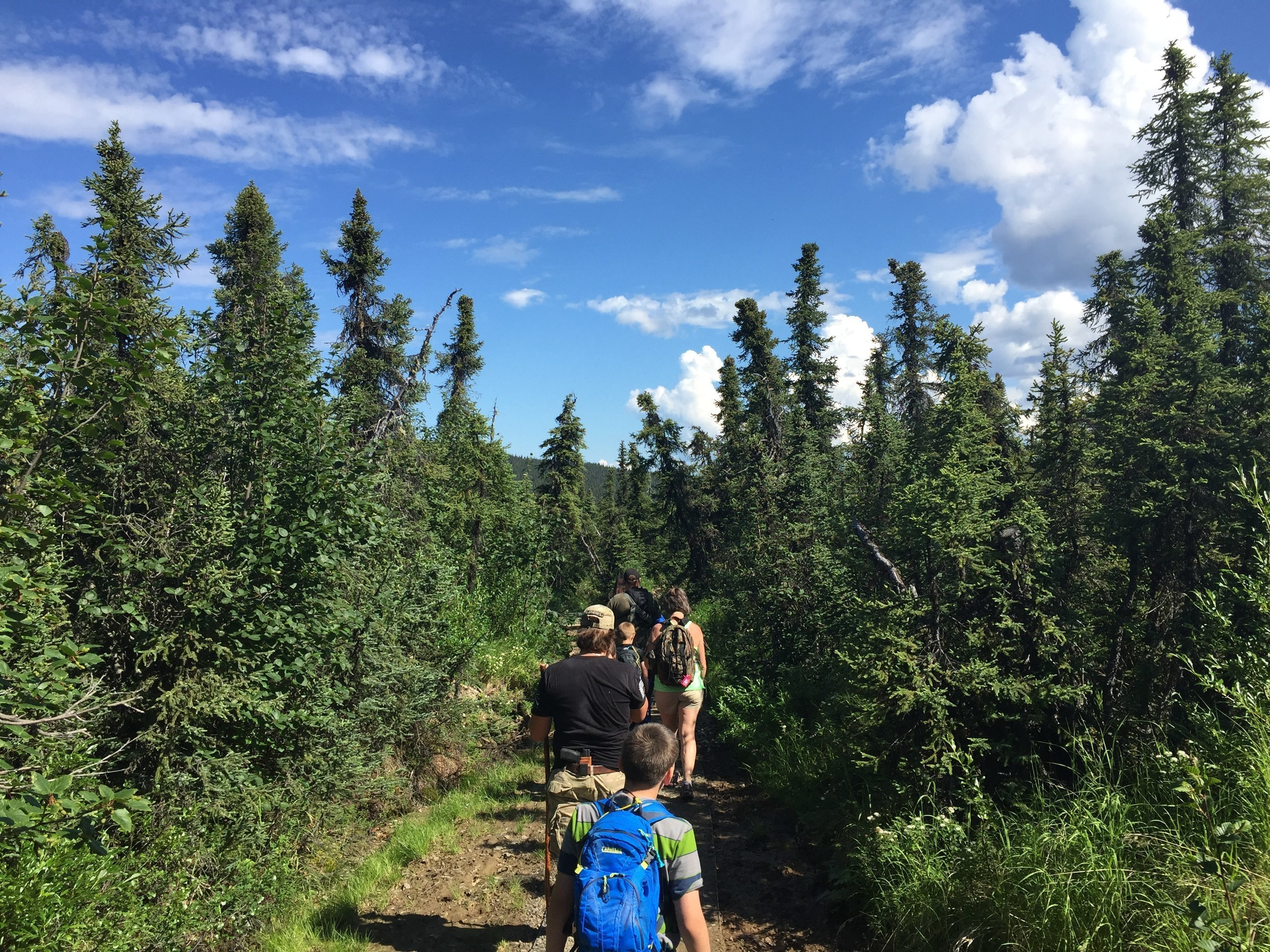 Wounded veterans and family members walked the Wickersham Dome Trail of Alaska's White Mountains as part of a challenge series set to last through fall.