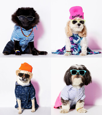 American Eagle Outfitters' Canine Collection, American Beagle Outfitters, Goes From April Fools' Joke To Real-Life Dog Fashion Line.  (PRNewsFoto/American Eagle Outfitters)