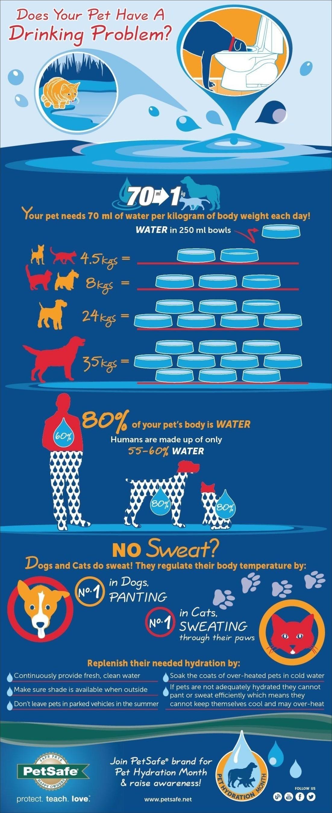 Does Your Pet Have A Drinking Problem? (PRNewsFoto/PetSafe)