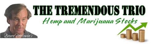Businessmen Bank on Marijuana as Colorado's Green Rush Approaches in the Medical Marijuana Industry