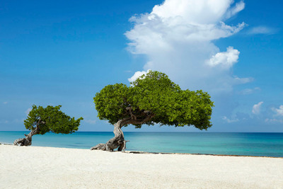 Red State/Blue State - Escape to a Happy State on Aruba's Happy Island aruba.com.  (PRNewsFoto/Aruba Tourism Authority)