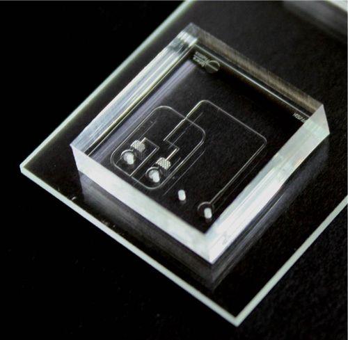 A Pico-Gen™ biochip (actual size: 1.5 x 1.5 cm)
