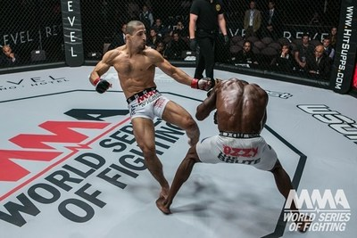 World championship MMA promotion World Series of Fighting has brought a Hollywood marketing expert on board its ship to grow its portfolio of sponsors.