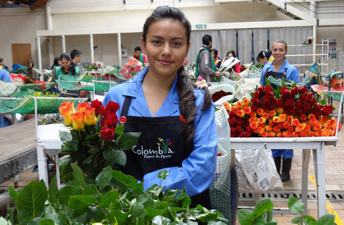 Colombian Flowers 1st Product To Enter Usa Under Us Colombia Free