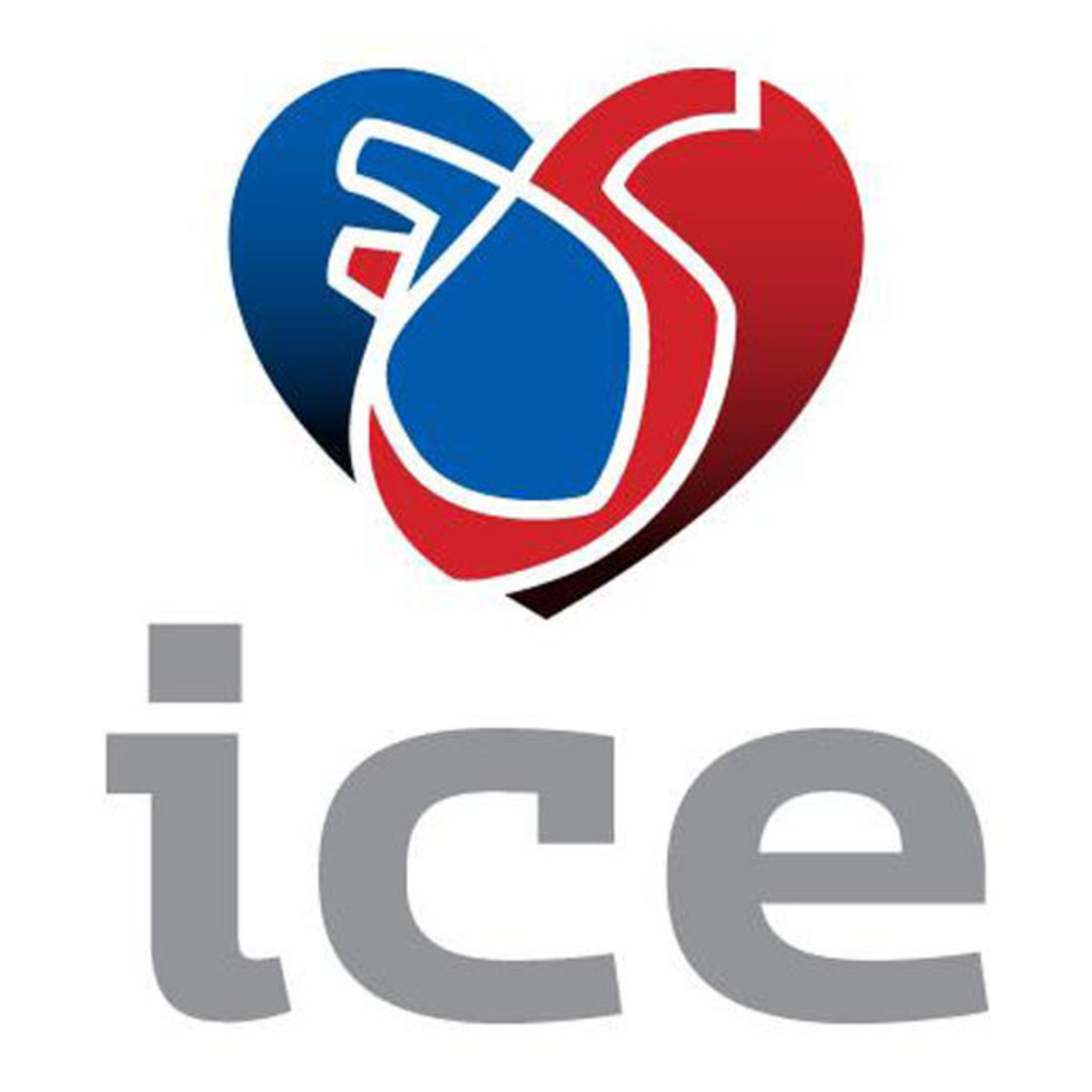 ICE Logo.