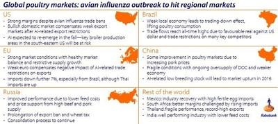 Global poultry markets: avian influenza outbreak to hit regional markets.