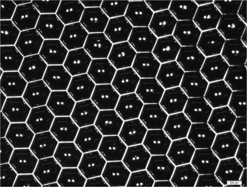 Shrink Nanotechnologies Unveils Product Image of Initial StemDisc450 Prototype