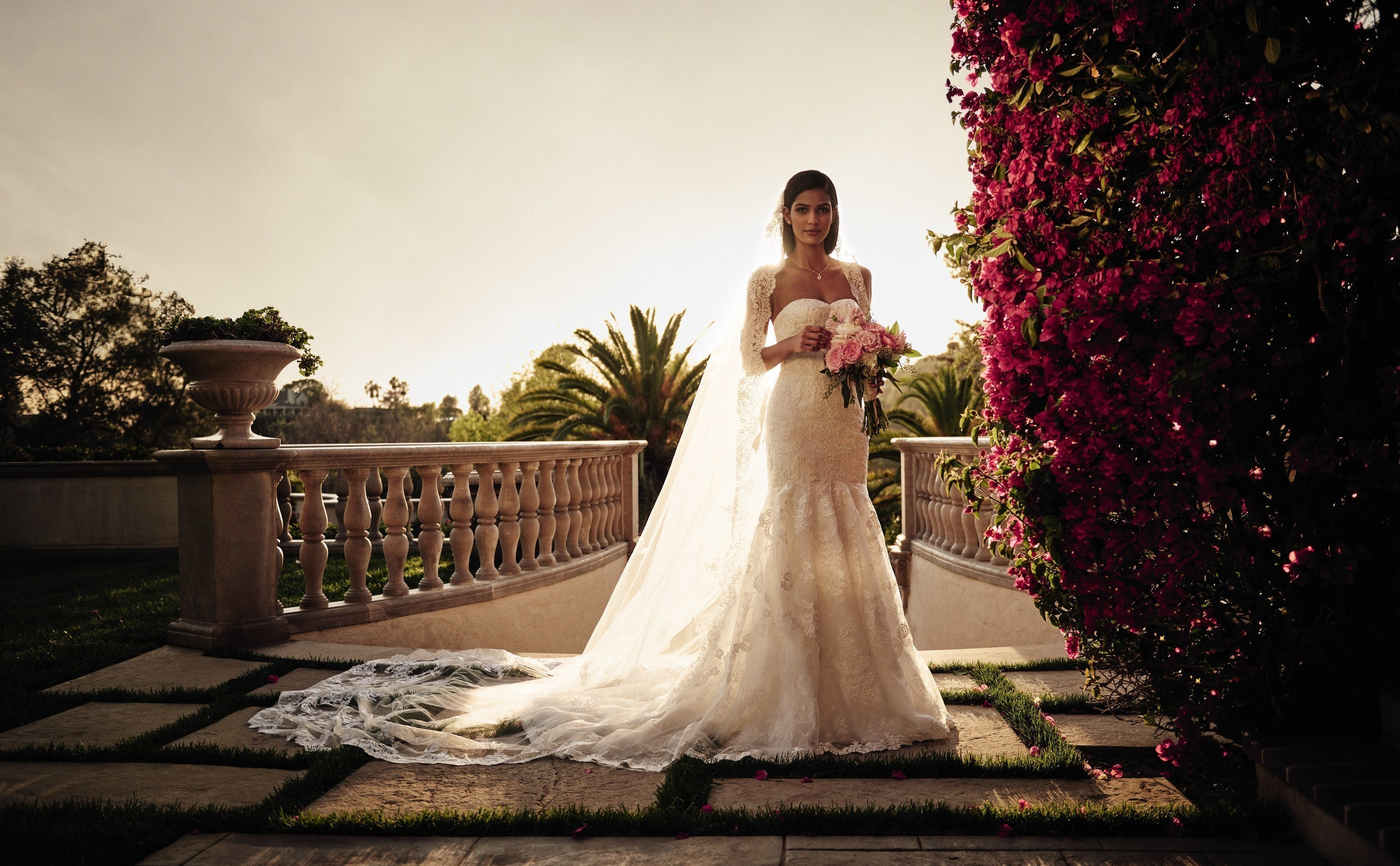 David's Bridal Announces International Expansion With Franchise Partner in Mexico City
