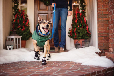 Petco shares important travel and safety advice for pet parents during the holiday season