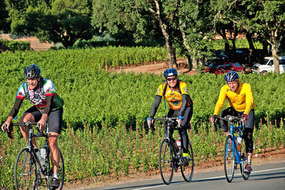 Cyclists enjoy the Napa Valley Vine Trail, a 47-mile bike path through this wine region.