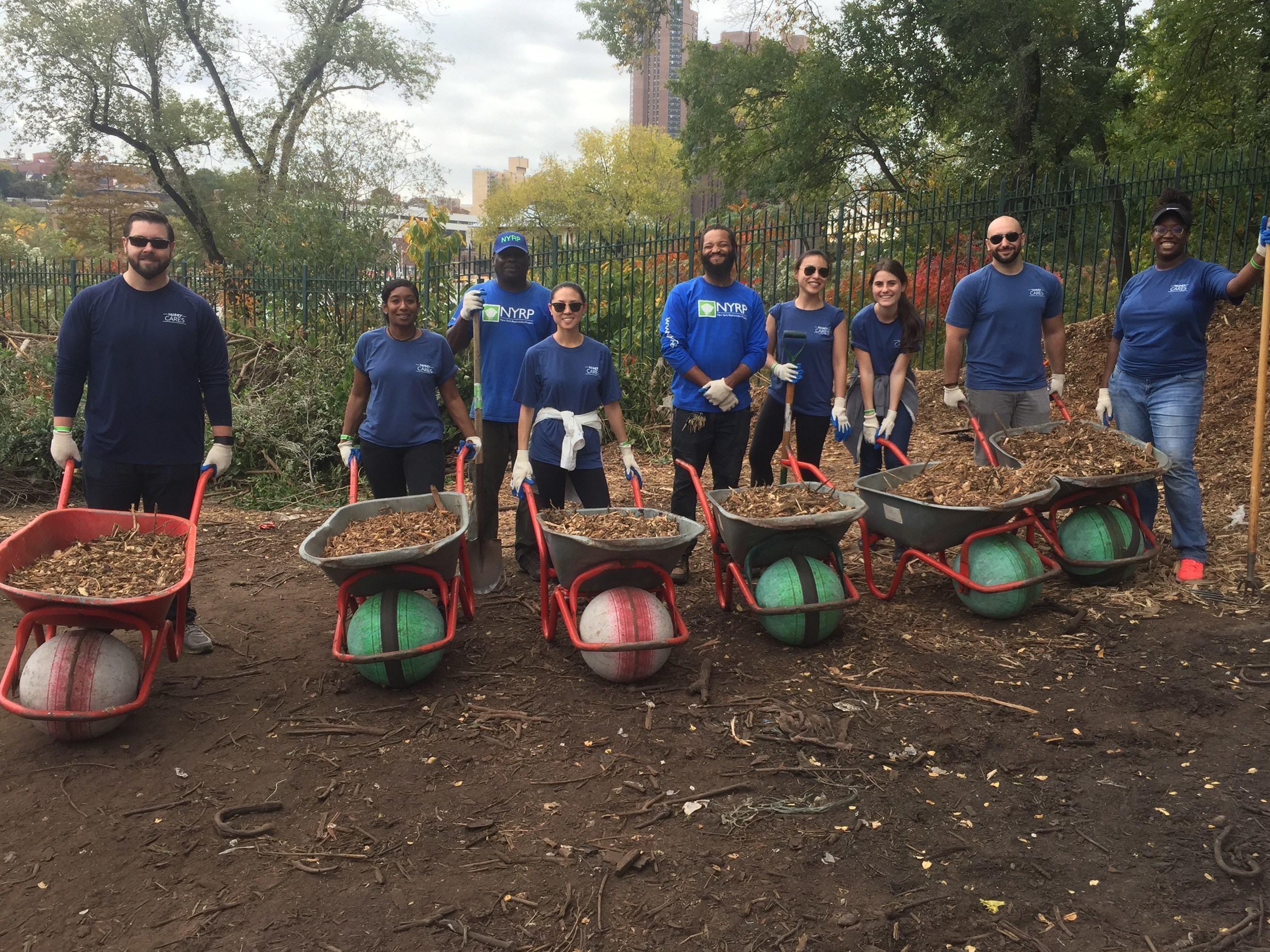 WebMD Partners with Local Parks to Improve Public Spaces and Encourage Physical Activity