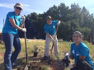 Bayer employees plant a pollinator garden at the UC Davis Arboretum and Public Garden.