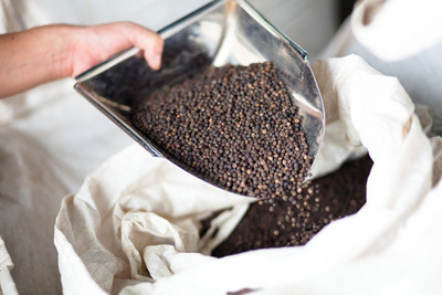 Olam Spices & Vegetable Ingredients Announces Expansion of Its Vietnam Facility Enhancing Production and Safety of Its Black Pepper and Spices. (PRNewsFoto/Olam Spices & Vegetable Ingredients) (PRNewsFoto/OLAM SPICES & VEGETABLE ...)