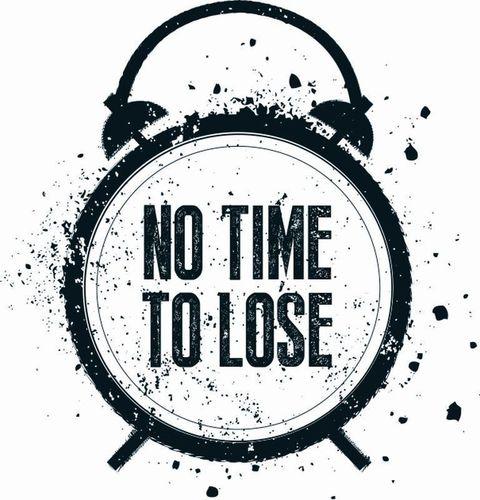 No Time To Lose Logo (PRNewsFoto/IOSH)