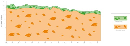 Effect of Timorex Gold(R) on leaf production in a commercial area of 134 hectares (Belize, 2008-2009) ...