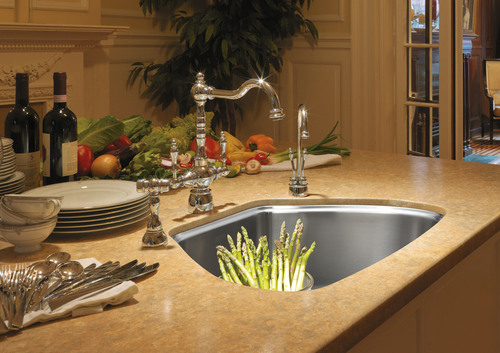 Franke Looks To The Future With Centennial Sink