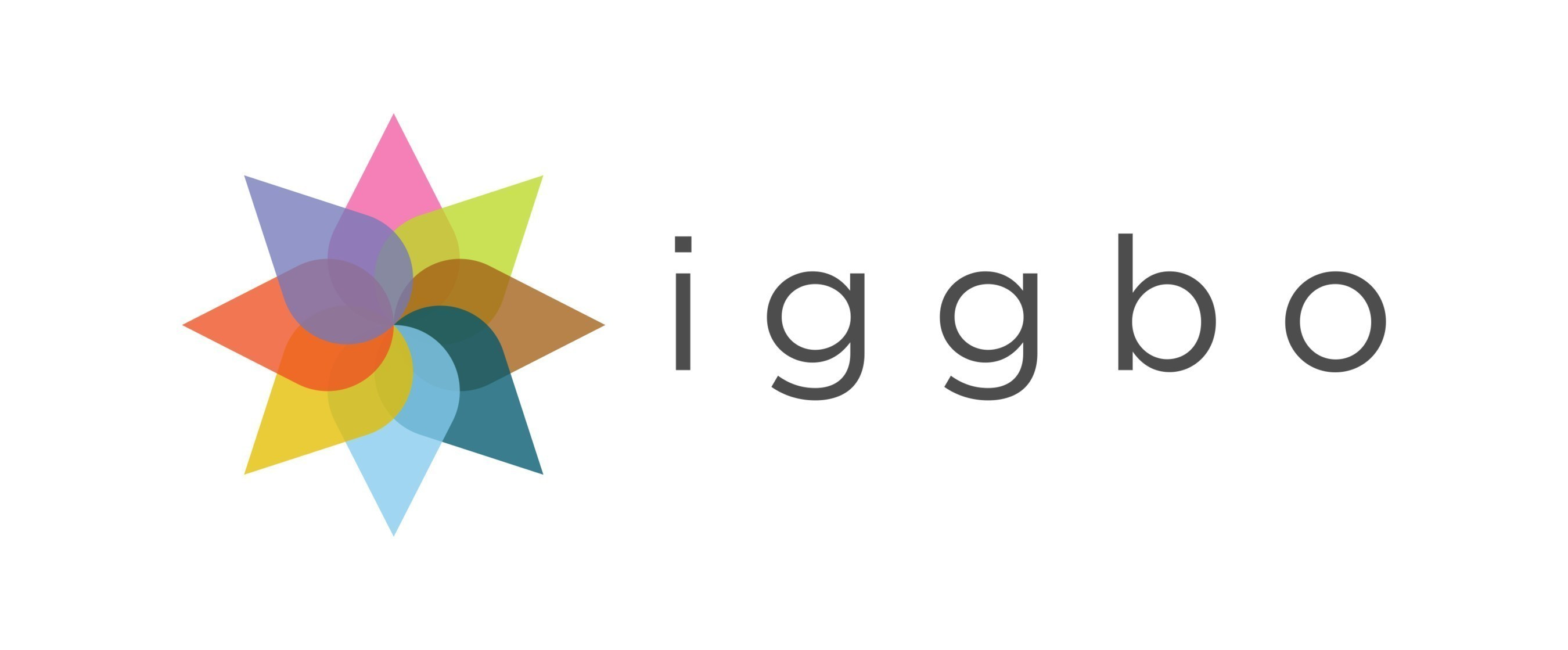 Iggbo Hires Affordable Care Act Executive To Lead Customer Care/Help Desk  Operation