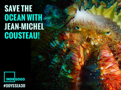 Jean-Michel Cousteau's ODYSSEA 3D Takes Audiences Diving With The Ocean's Smallest Creatures. Be part of Jean-Michel Cousteau's Indiegogo Crowdfunding Campaign at  http://bit.ly/GogoOdyssea3D.
