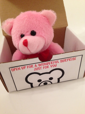 Send a surprise gift to your loved one with Teddybearforfree.com. (PRNewsFoto/Teddybearforfree.com) (PRNewsFoto/TEDDYBEARFORFREE.COM)