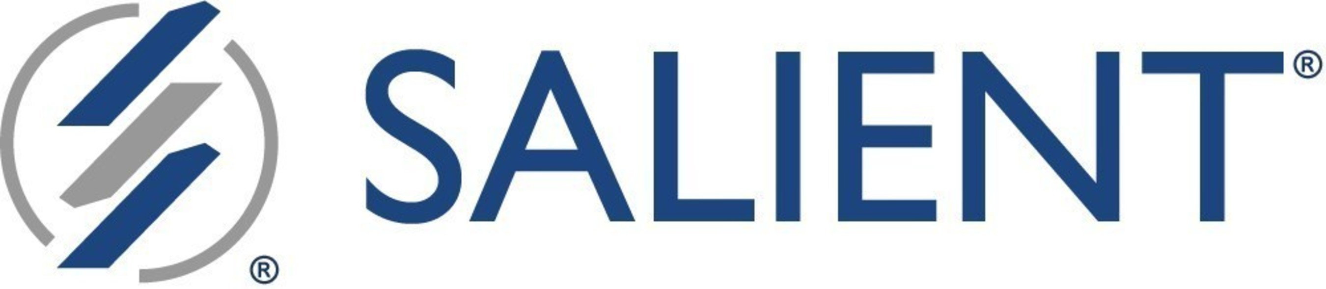 Salient Management Company is a worldwide provider of advanced performance management and decision support ...