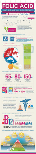 New Folic Acid Infographic from National Healthy Mothers, Healthy Babies Coalition and TJL Enterprises Provides Guidance on Children's Consumption. (PRNewsFoto/National Healthy Mothers, Healthy Babies Coalition) (PRNewsFoto/NATIONAL HEALTHY MOTHERS...)
