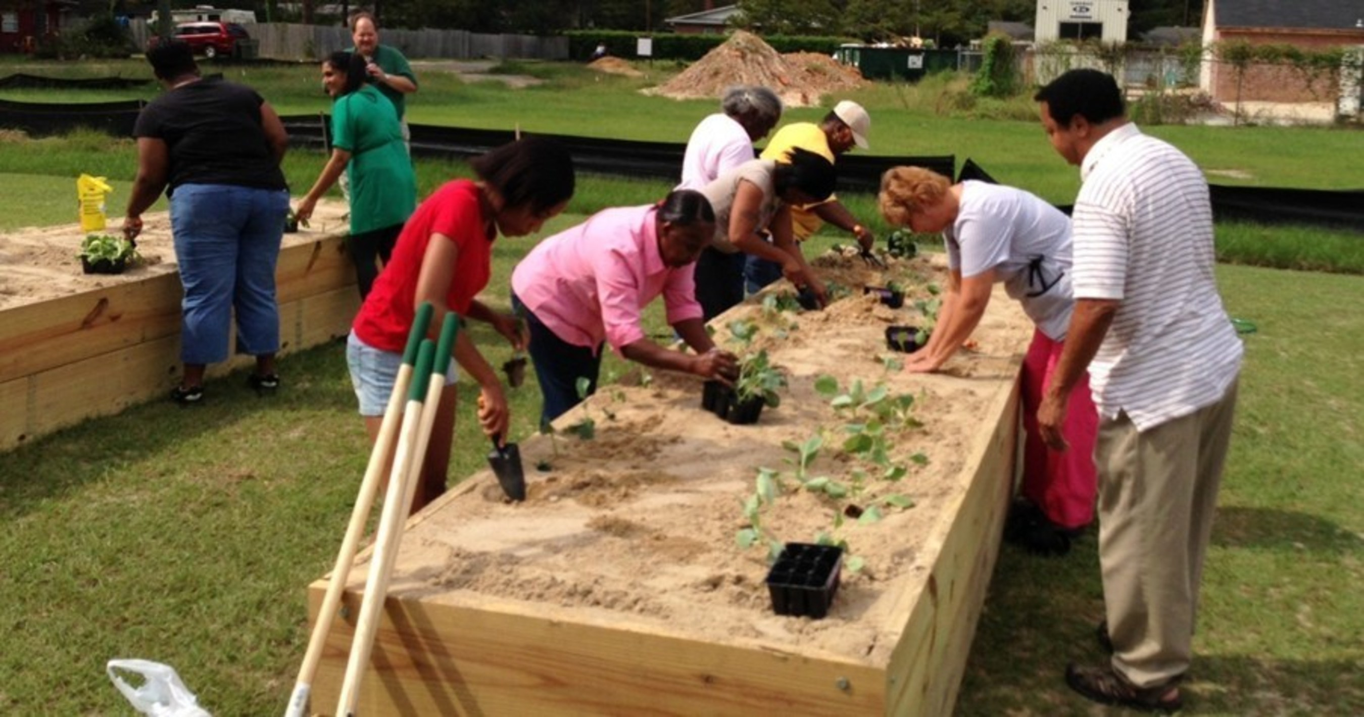 WellCare Strengthens Support to Increase Community Gardens in ...
