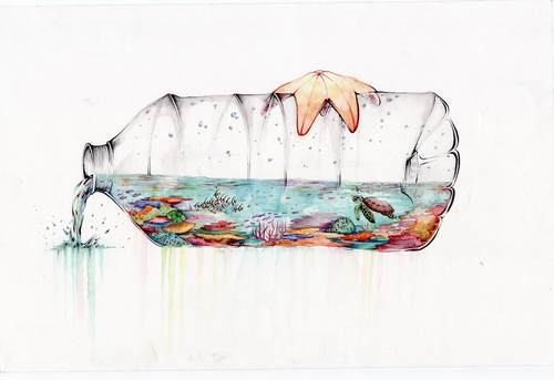 'Reef in a Bottle' by Riley Samels. Winning entry for the Khaled bin Sultan Living Oceans ...