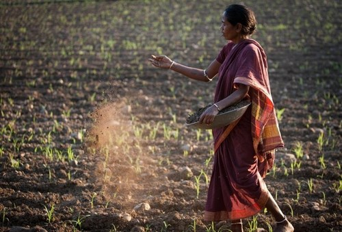 Farmer spreading organic compost. (PRNewsFoto/C&A Foundation) (PRNewsFoto/C&A Foundation)