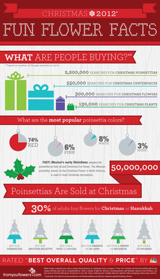 From You Flowers Christmas Flower Infographic. Learn What Type of Flowers Are The Most Popular To Send This Holiday.  (PRNewsFoto/FromYouFlowers.com)
