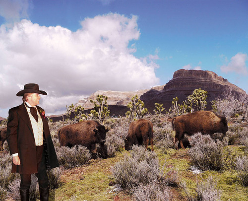 Grand Canyon Ranch Introduces Buffalo Into the Arizona Wilderness