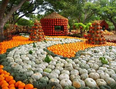 "The Dallas Arboretum and Botanical Garden celebrates Autumn at the Arboretum featuring 75,000 pumpkins, gourds and squash and the nationally acclaimed Pumpkin Village, named one of ""America's Best Pumpkin Festivals""  by Fodor's Travel. The festival runs from September 19 through November 25, 2015. For more information, visit dallasarboretum.org."