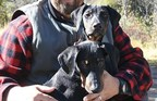 Miss Scarlett and Sage, inspiration behind Two Bitch Spirits Ltd. The sister pups were rescued from the West Side Animal Shelter in Albuquerque, New Mexico.