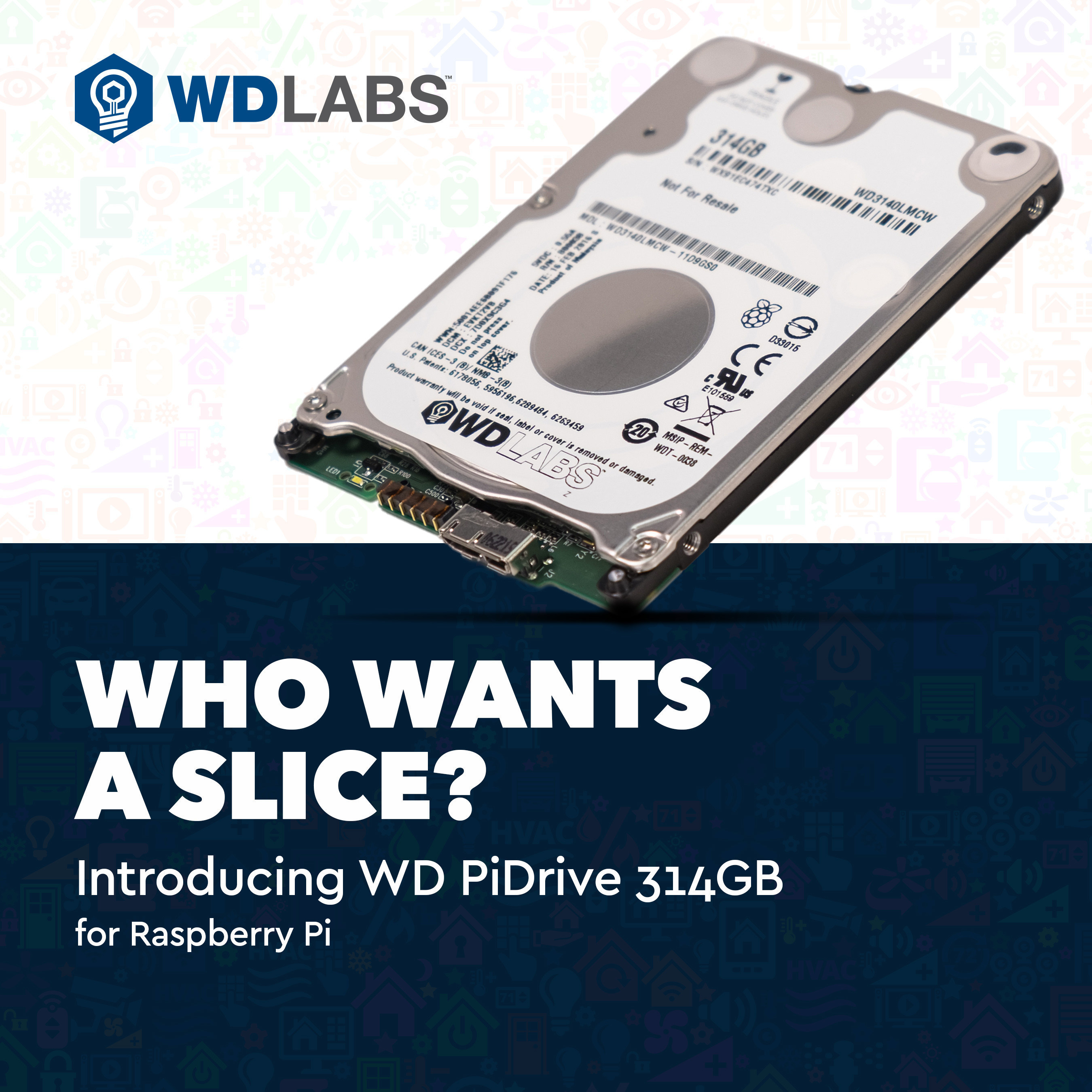 Western Digital Offers Growing Raspberry Pi Community New 314GB Drive