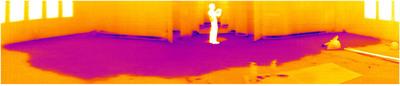 FLIR - Thermal Image Capture.  (PRNewsFoto/FLIR)