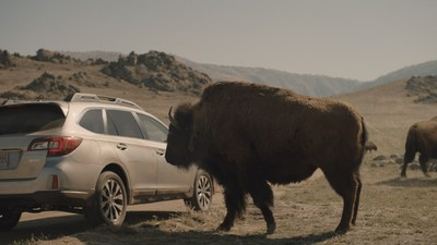 Subaru Launches Ad Campaign for all-new 2015 Outback (PRNewsFoto/Subaru of America, Inc.)