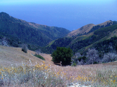 Photo of newly acquired property and its view of the Pacific Ocean in the Ventana Wilderness. (PRNewsFoto/The Wilderness Land Trust) (PRNewsFoto/THE WILDERNESS LAND TRUST)