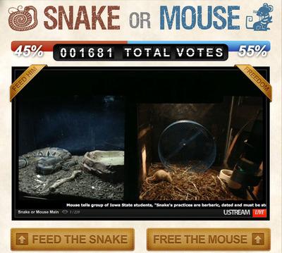SnakeOrMouse.com.  (PRNewsFoto/SnakeOrMouse.com)