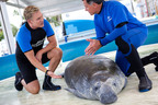 Sam Champion - host of Sea Rescue, SeaWorld's popular TV series on ABC affiliates nationwide, talks to SeaWorld Rescuer Pedro Ramos about the rehabilitation of a rescued manatee.  (PRNewsFoto/SeaWorld Parks & Entertainment)