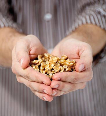 Walnuts may improve male reproductive health.  (PRNewsFoto/California Walnut Commission)