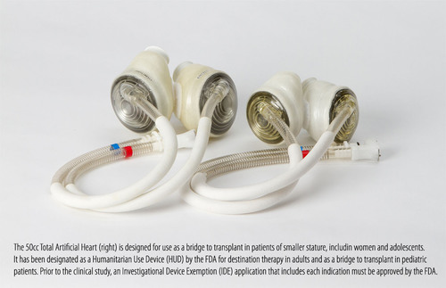The 70cc SynCardia Total Artificial Heart, left, has been implanted in nearly 1,300 patients worldwide. The smaller 50cc SynCardia Heart, right, which could go to clinical trials this year pending FDA approval, is designed to fit in heart failure patients of smaller stature, including most women and many adolescents.  (PRNewsFoto/SynCardia Systems, Inc.)