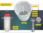 Illustration of Reactor Core Baffle Bolts