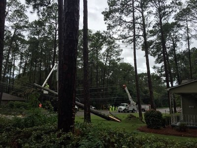 Large trees caused extensive damage in South and Coastal Georgia during Tropical Storm Hermine. Georgia Power crews work to restore service to thousands and quickly and safely as possible.