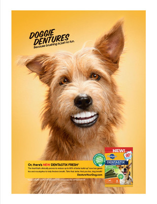 "PEDIGREE(R) DENTASTIX(R) offers a new line to combat an often over-looked - and sometimes embarrassing - canine dilemma: the feared ""dog breath."" Dog owners who have noticed this problem are in luck - the PEDIGREE(R) lineup now offers new DENTASTIX(R) Fresh Treats for Dogs, a great-tasting treat that dogs will love. For more information on PEDIGREE(R) DENTASTIX(R), visit www.pedigree.com.  (PRNewsFoto/PEDIGREE Brand)"