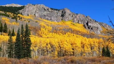Fall in Denver.