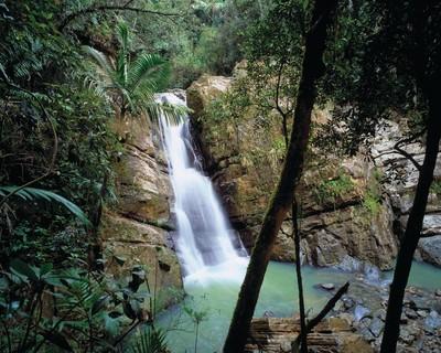 El Yunque National Forest in Puerto Rico (PRNewsFoto/Puerto Rico Tourism Company)