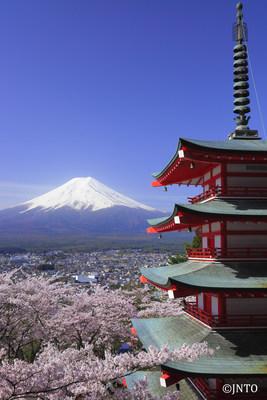 Mt. Fuji & Chureito Peace Pagoda