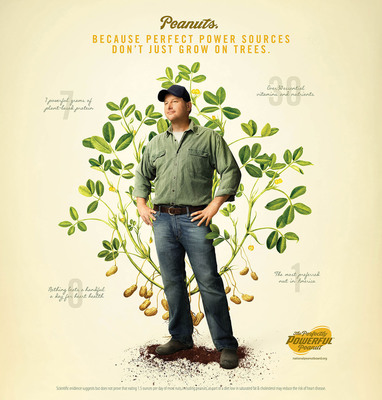 """Peanuts: Because Perfect Power Sources Don't Just Grow On Trees. National Peanut Board's new advertising campaign, """"The Perfectly Powerful Peanut,"""" takes a strikingly original approach to advertising with its use of hand-illustrated botanical art aimed at showcasing the authentic nature of peanuts as a plant-based source of nutrition. In this advertisement is Jeffrey Pope, a peanut farmer from Virginia. (PRNewsFoto/National Peanut Board)"""