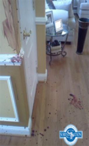 Crime Scene Cleanup (PRNewsFoto/SI Restoration)