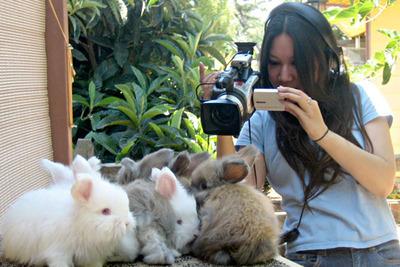 Rabbit Fever - Amy Do.  (PRNewsFoto/Amy Do)