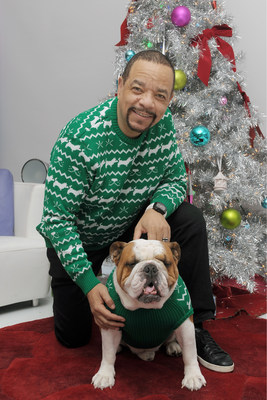 CESAR® Brand Is Bringing Holiday Sweaters To The Dogs With The Help Of Ice-T, Mark Ballas And Devon Still
